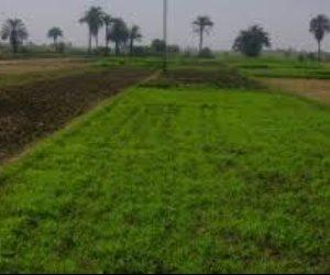 أراضى وعقارات ومُنشآت وأموال سائلة.. من يحمى المليارات الحائرة بين أروقة الإصلاح الزراعي؟