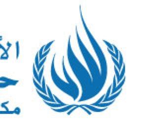 المفوضية السامية لحقوق الإنسان «كاذبة» في عين الخبراء