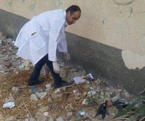 استجابة لشكاوى المواطنين.. حملة موسعة للقضاء على الكلاب الضالة بشمال سيناء (صور)