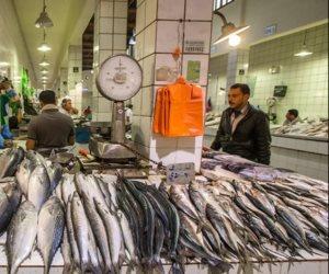 تعرف على أسعار السمك اليوم الاثنين 1-6-2020.. السمك البوري يبدأ من 40 جنيها للكيلو