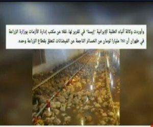كداب يا خيشة.. مذيع «مكملين» يعرض صورة دواجن نافقة في سيول إيران وينسبها لمصر (فيديو)