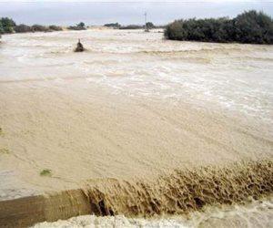 أهالي سيناء يحولون مياه السيول من نقمة إلى نعمة باستخدامها في الزراعة (صور)