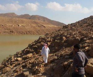«شوشة»: زراعة 25 ألف فدانا بالقمح والشعير على مياه السيول في وسط سيناء (صور)