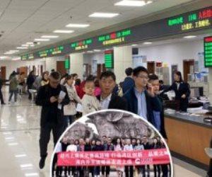 30 دقيقة لإنهاء خدماتك.. «النافذة الواحدة» في الصين تواجه التكدس بالمكاتب الحكومية