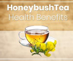 يعالج الأرق والمفاصل والكبد.. الفوائد الصحية لشاي عسل النحل