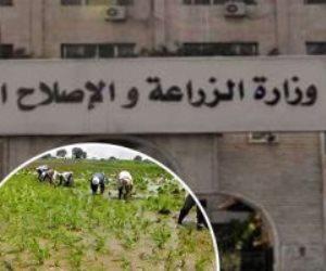 لإنتاج «أورجانيك» خالي من المبيدات.. الزراعة تعلن «حزمة تسهيلات»
