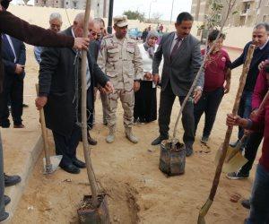 تحت رعاية الجيزة.. إطلاق مبادرة لزراعة 1000 شجرة مثمرة بمدارس إدارة الهرم