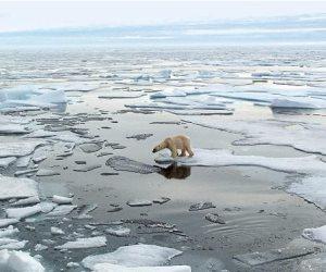 بسبب التغير المناخي.. علماء يحذرون من كارثة في 2020