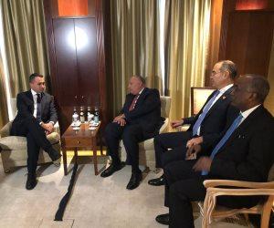 «شكري» يلتقي نظيره الإيطالي على هامش فعاليات قمة مؤتمر برلين حول ليبيا