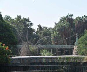 بعد الاتفاق على ترميمه.. أهم تفاصيل كوبري «إيفل المعلق» بحديقة الحيوان