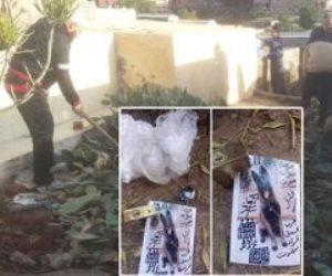 «احنا معاكم».. مبادرة شبابية من أهالي الشرقية لتطهير المقابر من أعمال السحر