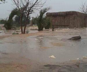 أمطار تعم شمال سيناء.. والمحافظة  ترفع درجة الاستعداد لمواجهة الأحوال الجوية ( صور)
