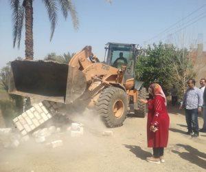 (صور).. محافظة الشرقية تشن حملات لإزالة التعديات على الأراضي الزراعية