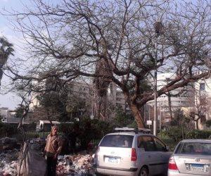 """ضمن مبادرة صوت الأمة """"امسك مؤذي"""".. مخالفات بالجملة في شوارع العباسية ورمسيس (صور)"""