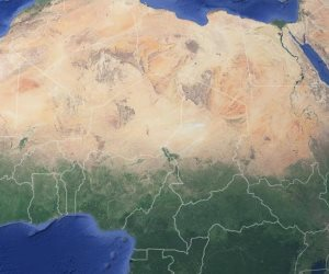 إفريقيا في أسبوع.. تفويض صلاحيات الحكومة التونسية لشهرين.. ومكافحة الجراد الصحراوي في 6 دول