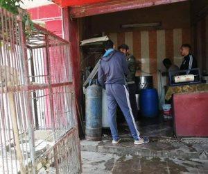 تداول الطيور الحية بالشوارع في بني سويف والشرقية.. الأمراض والأوبئة تحاصر المواطنين