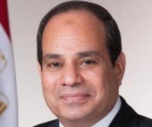 إنجازات الرئيس السيسى في مجال الطاقة.. فيديو