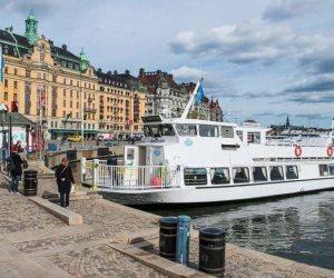 """رغم كارثة أوروبا.. تجربة """"مناعة القطيع"""" تنقذ السويد من وباء كورونا"""