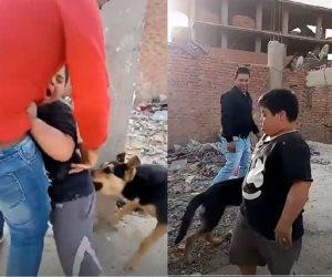 النائب العام يأمر بحبس المتهمين بالاعتداء على طفل من ذوي الاحتياجات بكلب