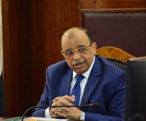 رفض تنفيذه. حكم قضائي يغرم وزير التنمية المحلية 400 ألف جنيه.. ويلزمه بإعادة رئيس حي الدقي لعمله