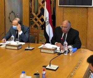 شكرى: نعول على الجاليات المصرية فى الخارج لفضح أكاذيب الإخوان