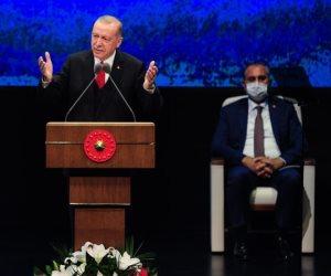 بعد تدميره سوريا والعراق.. أردوغان يدعو لتقسيم قبرص إلى دولتين سعيا لنشر الفوضى