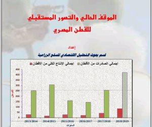 أجور العمالة.. 32% من تكاليف فدان إنتاج القطن وإيجار الفدان يمثل النسبة الأكبر