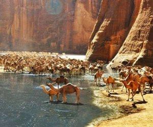 بعد انخفاض كورونا... السياحة الجبلية والمحميات تعود للحياة