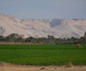 تفاصيل توزيع أراضى جاهزة للزراعة على الشباب بالوادى الجديد (صور)