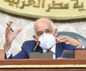 أهالي مسقط رأس عبد العال: «دراو» أصبحت على الخارطة العالمية بسبب رئيس البرلمان