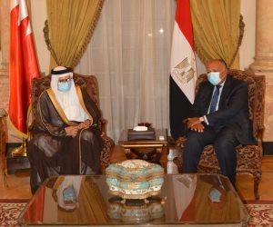 اتفاق مصرى بحرينى على الدعوة لوقف إطلاق النار بليبيا وتشكيل مجلس رئاسى جديد