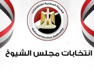 اللجنة العليا للانتخابات تشكل لجانا لرصد المخالفات في انتخابات الإعادة بمجلس الشيوخ 2020
