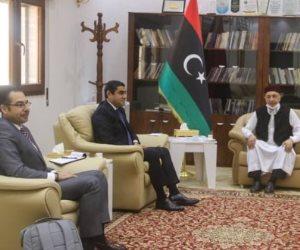 وفد مصري يلتقي عقيلة صالح ويؤكد أهمية العودة للمسار السياسي وتثبيت وقف إطلاق النار