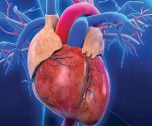 تعرف على أفضل وأسوأ 10 أطعمة لصحة القلب فى يومه العالمى