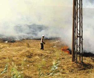 «راجعين من تاني» لحرق قش الأرز.. هكذا تتصدى الدولة للظاهرة الخطيرة في المحافظات