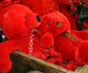 كورونا تضرب موسم عيد الحب.. الغرفة التجارية: 90% تراجعا في مبيعات الهدايا والدباديب لأول مرة منذ سنوات