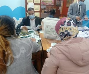 البيان الإحصائى لدائرة منوف وسرس الليان: إعادة على المقعدين بين بين أبو زيد وطلبه ومعاذ والجزار
