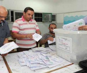 البيان الإحصائى للدائرة الثانية بدمياط.. فوز قائمة أبناء مصر بـ75191 صوتا