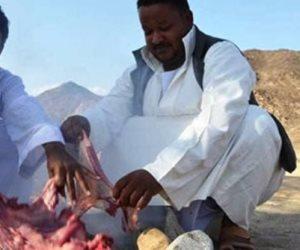 الاستجمام في وادي كريجع.. أبناء الشلاتين يستقبلون سقوط الأمطار بحفل «الجبنة والسلات»