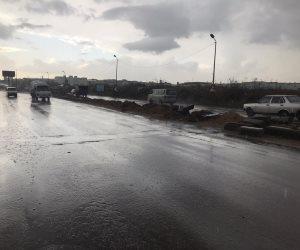 أمطار غزيرة بالطريق الصحراوى غرب الإسكندرية .. صور