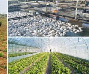 إنجازات الدولة فى 6 سنوات من عهد السيسي: 224 مشروعا زراعيا.. و1.5 مليون فدان
