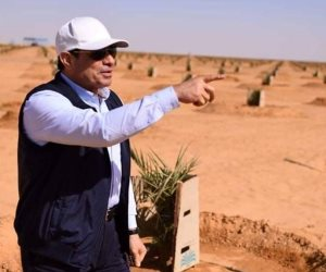 إحياء توشكى.. نحو مليون و141.5 ألف فدان موزعة للاستزراع بين «الخدمة الوطنية» و«الريف المصري» و«التعمير والتنمية الزراعية»