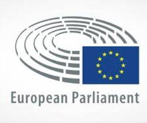 كيف انتهك البرلمان الأوروبى استقلال القضاء وأضر بالشراكة المصرية الأوروبية؟