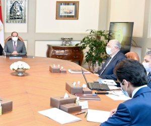 الرئيس يستعرض مشروعات المزارع السمكية بالتعاون مع الخبرة الأجنبية