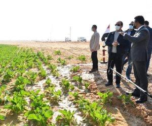الرئيس السيسي يتفقد مشروع مستقبل مصر للإنتاج الزراعي.. «500 ألف فدان من الخير»