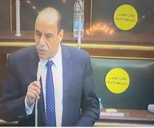 النائب سيد سلطان لـ «وزير التموين»: لا أحد يستقبل تظلمات المواطنين