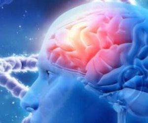 دراسة بريطانية تحدد الخلايا العصبية المعرضة للتلف بسبب مرض الزهايمر