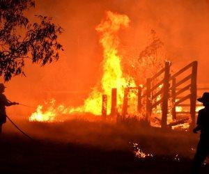 «خرجت عن السيطرة».. حرائق غابات في أستراليا تلتهم 71 منزلا وتحذيرات إلى السكان