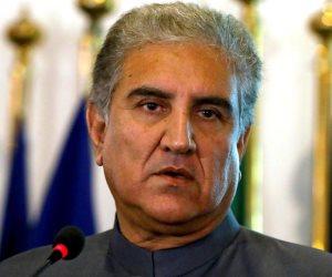 وزير خارجية باكستان: ننظر للتجربة التنموية المصرية بإعجاب ونتطلع للاستفادة منها