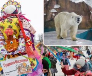 جولة حول العالم.. كتالونيا تعتقل أخطر زعماء المافيا الإيطالية.. والصين تفتتح منتزه فندق الدب القطبي